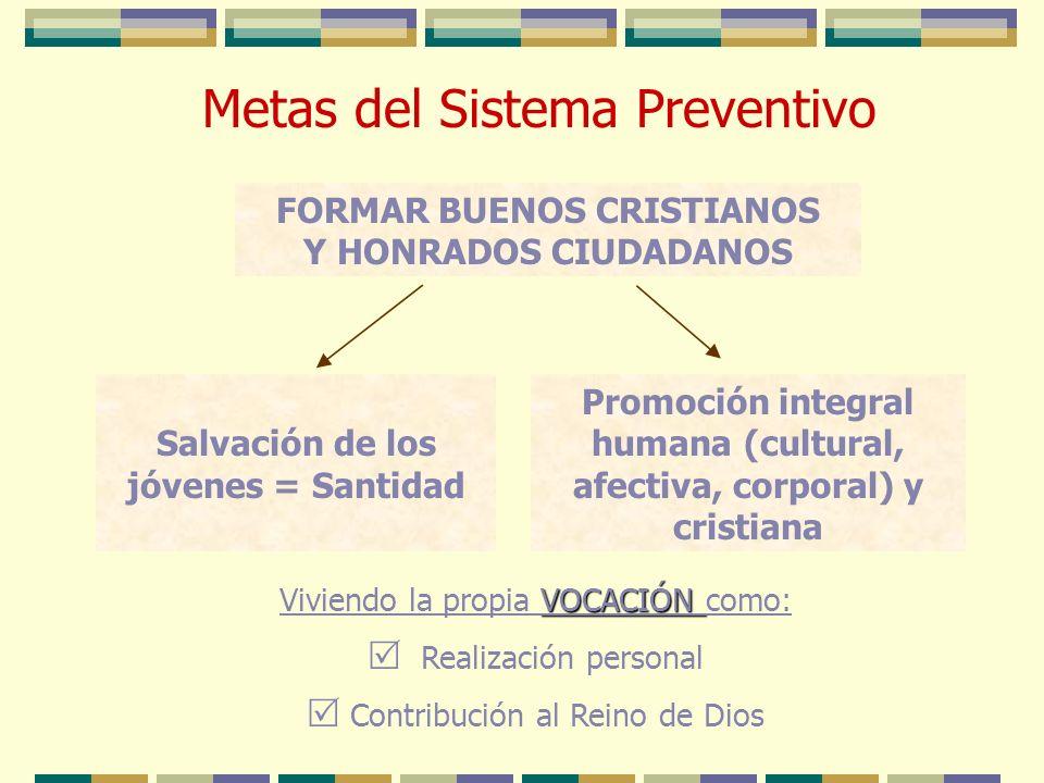 Metas del Sistema Preventivo