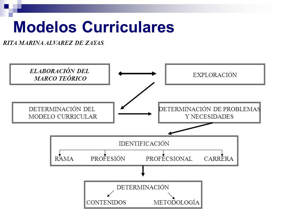 Modelos Curriculares RITA MARINA ALVAREZ DE ZAYAS ELABORACIÓN DEL