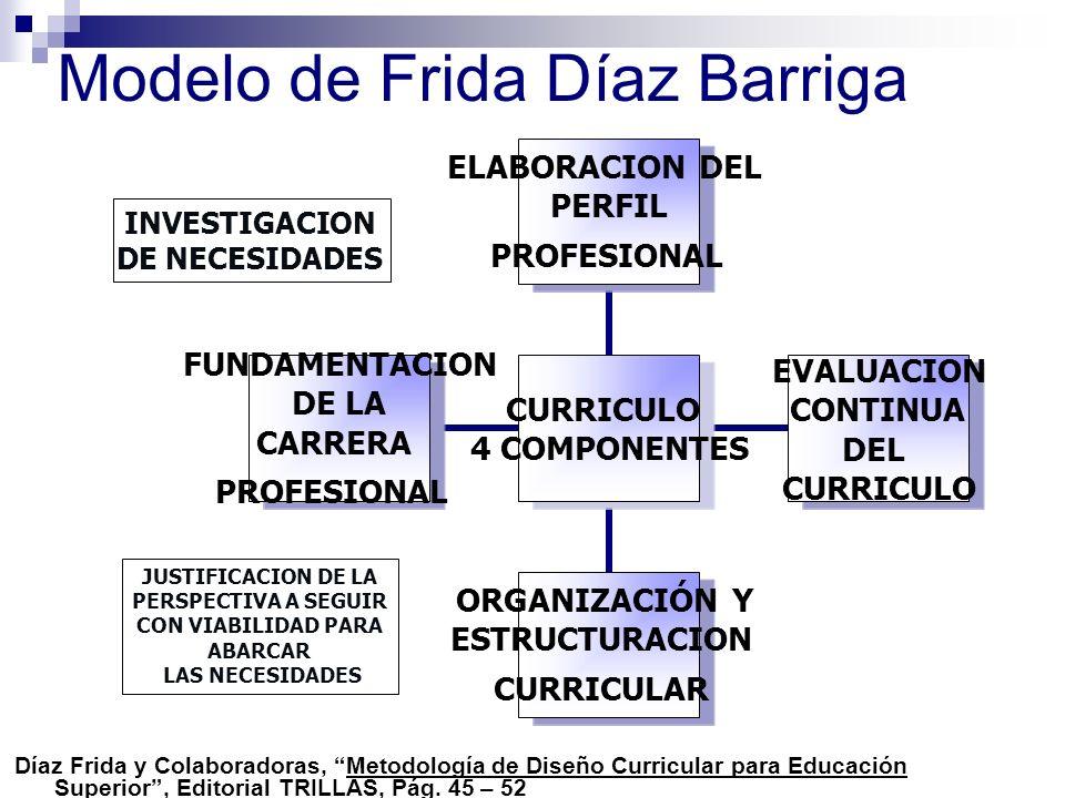 Modelo de Frida Díaz Barriga