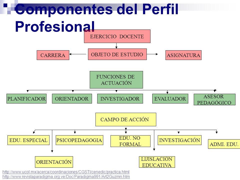 Componentes del Perfil Profesional