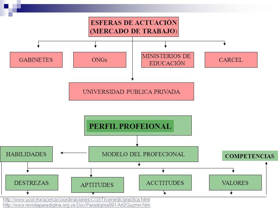 PERFIL PROFEIONAL ESFERAS DE ACTUACIÓN (MERCADO DE TRABAJO) GABINETES