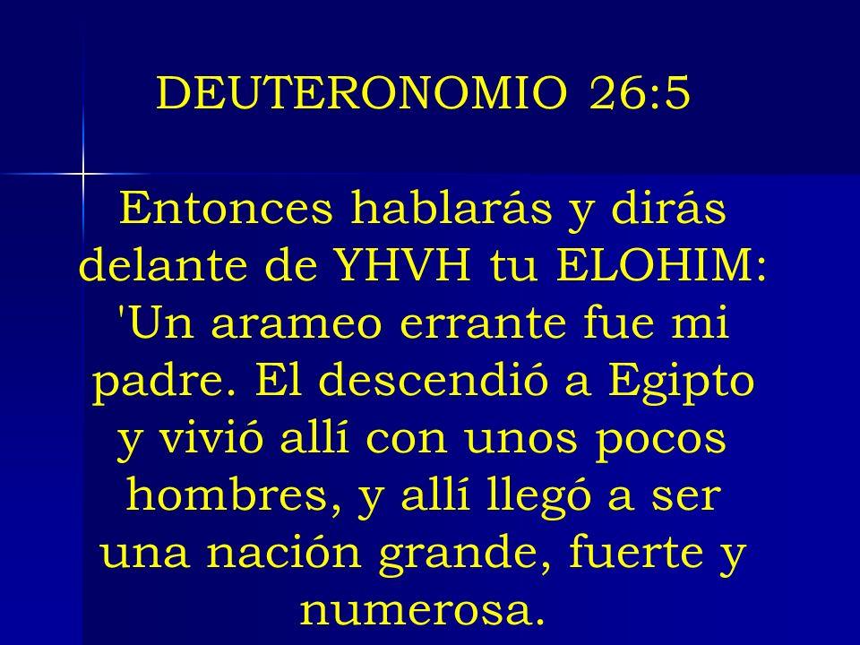 DEUTERONOMIO 26:5