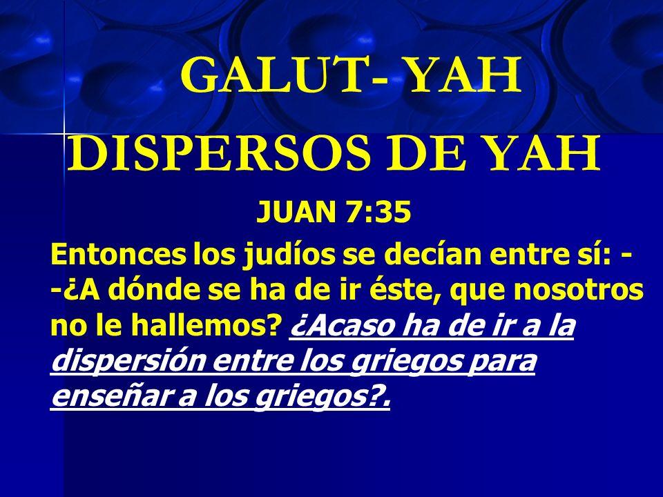 GALUT- YAH DISPERSOS DE YAH