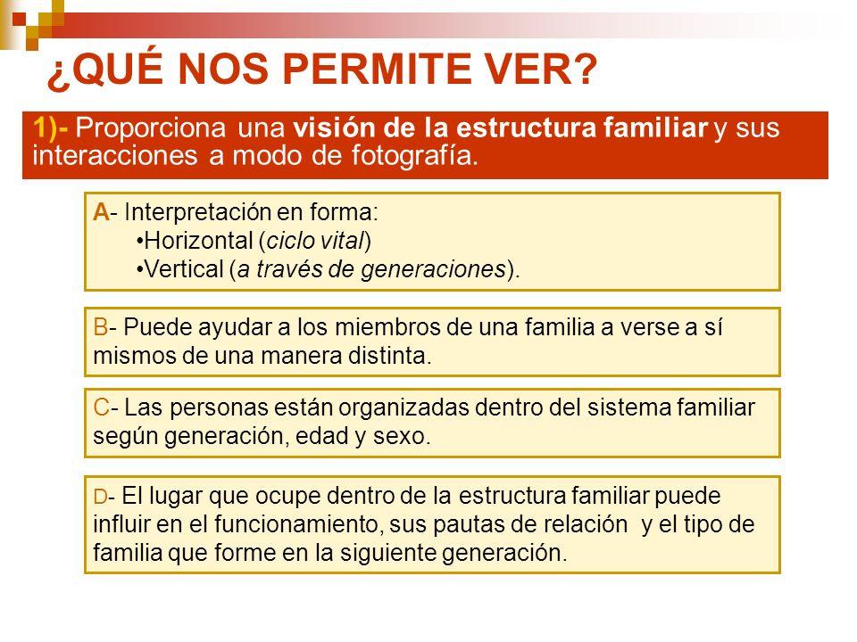 ¿QUÉ NOS PERMITE VER 1)- Proporciona una visión de la estructura familiar y sus interacciones a modo de fotografía.