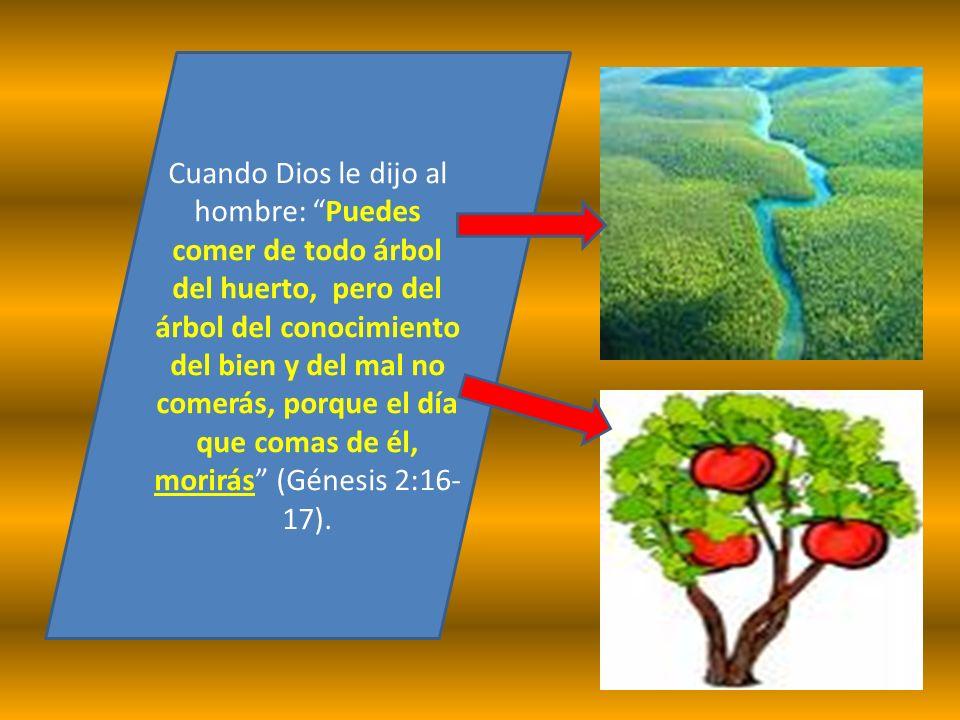 Cuando Dios le dijo al hombre: Puedes comer de todo árbol del huerto, pero del árbol del conocimiento del bien y del mal no comerás, porque el día que comas de él, morirás (Génesis 2:16-17).