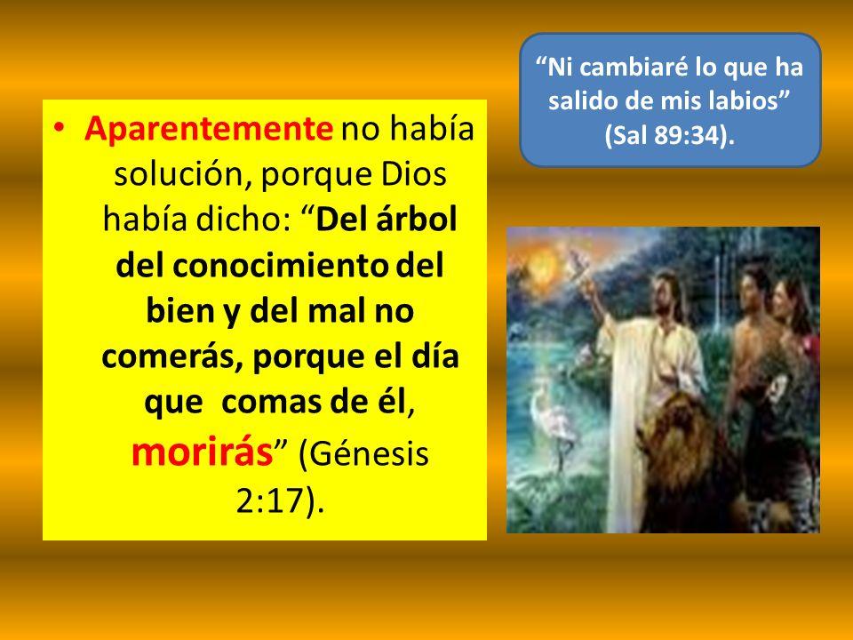 Ni cambiaré lo que ha salido de mis labios (Sal 89:34).