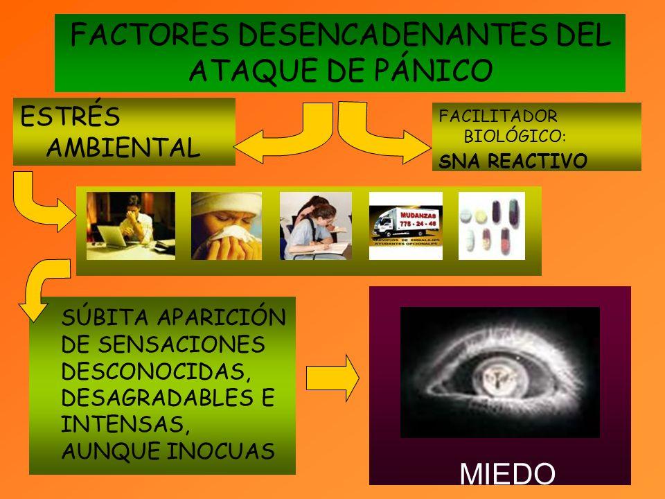 FACTORES DESENCADENANTES DEL ATAQUE DE PÁNICO
