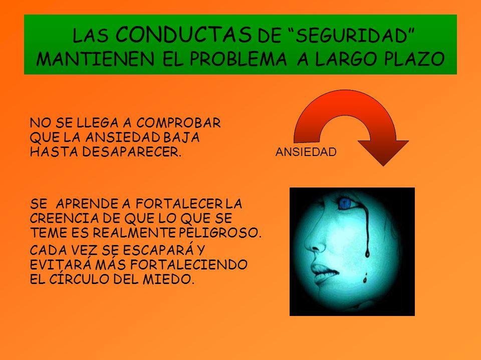 LAS CONDUCTAS DE SEGURIDAD MANTIENEN EL PROBLEMA A LARGO PLAZO