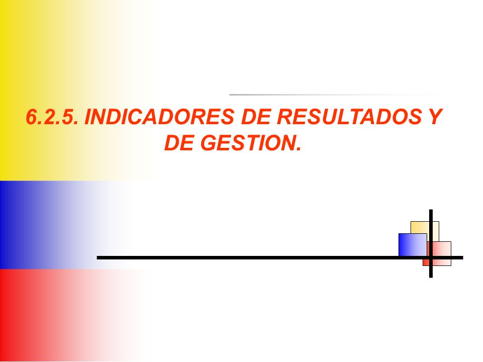 6.2.5. INDICADORES DE RESULTADOS Y DE GESTION.