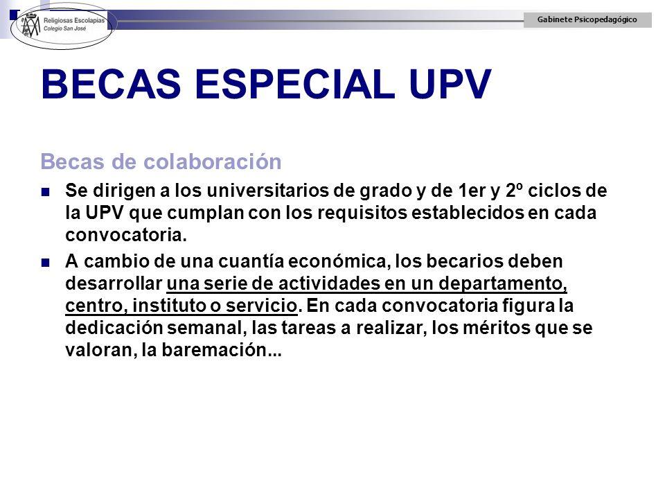 BECAS ESPECIAL UPV Becas de colaboración