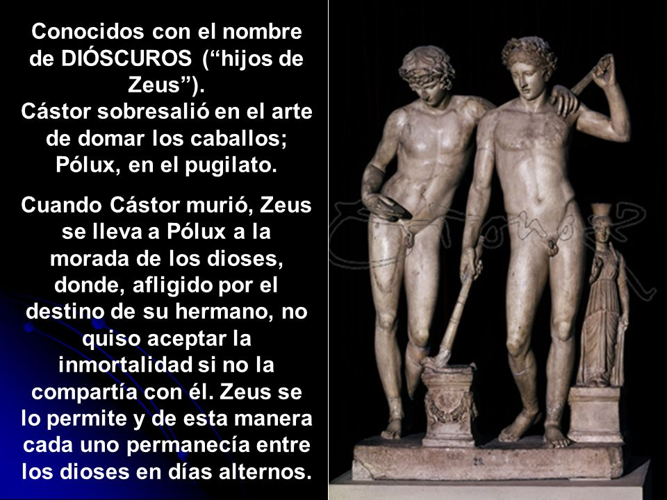 Conocidos con el nombre de DIÓSCUROS ( hijos de Zeus )