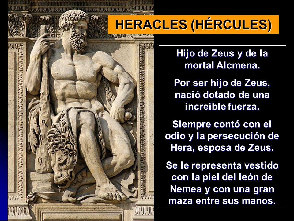 HERACLES (HÉRCULES) Hijo de Zeus y de la mortal Alcmena.