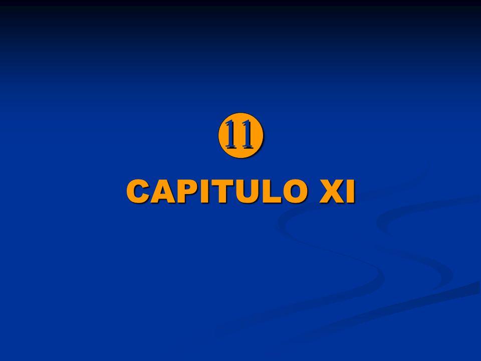  CAPITULO XI 11
