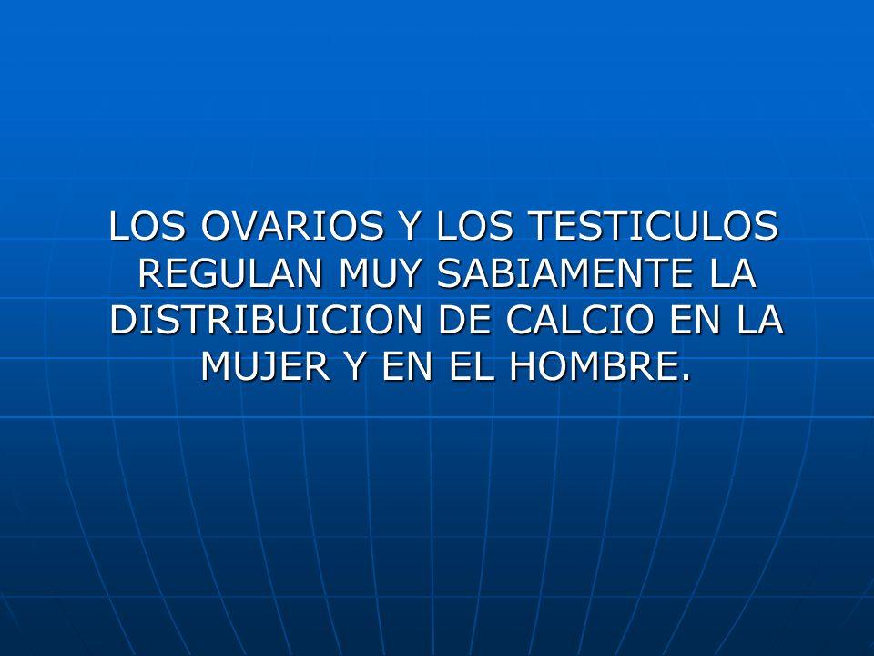 LOS OVARIOS Y LOS TESTICULOS REGULAN MUY SABIAMENTE LA DISTRIBUICION DE CALCIO EN LA MUJER Y EN EL HOMBRE.