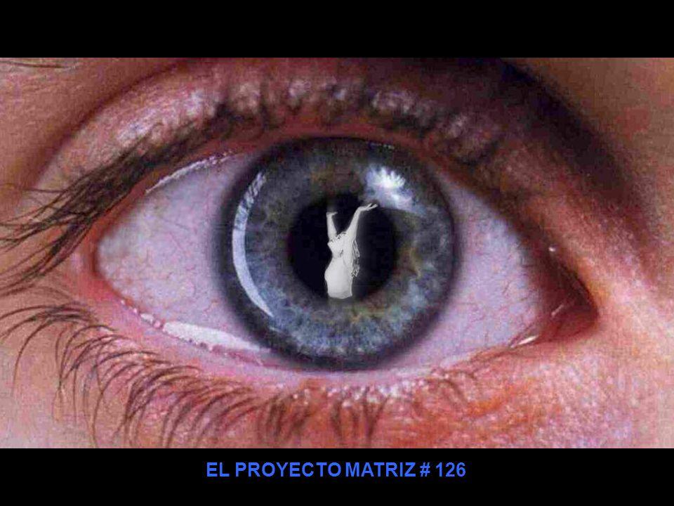 EL PROYECTO MATRIZ # 126