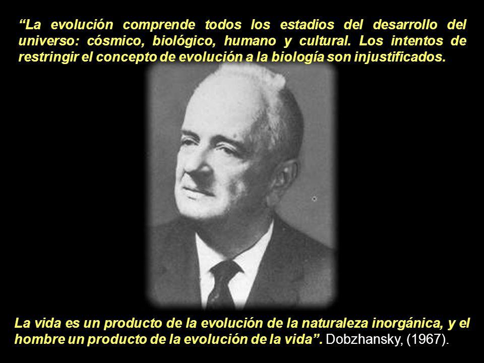 La evolución comprende todos los estadios del desarrollo del universo: cósmico, biológico, humano y cultural. Los intentos de restringir el concepto de evolución a la biología son injustificados.