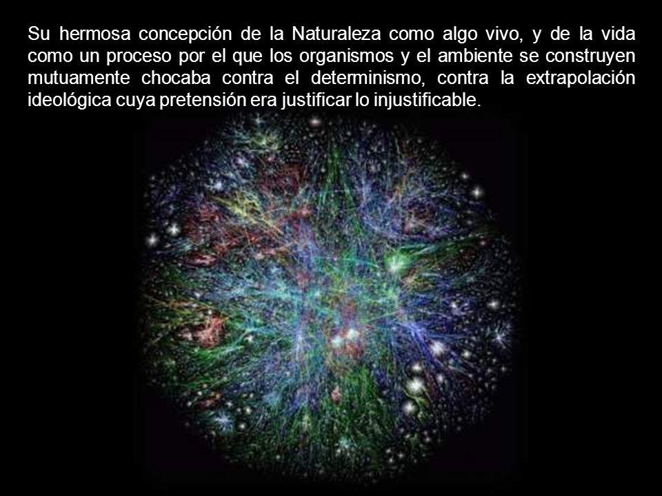Su hermosa concepción de la Naturaleza como algo vivo, y de la vida como un proceso por el que los organismos y el ambiente se construyen mutuamente chocaba contra el determinismo, contra la extrapolación ideológica cuya pretensión era justificar lo injustificable.