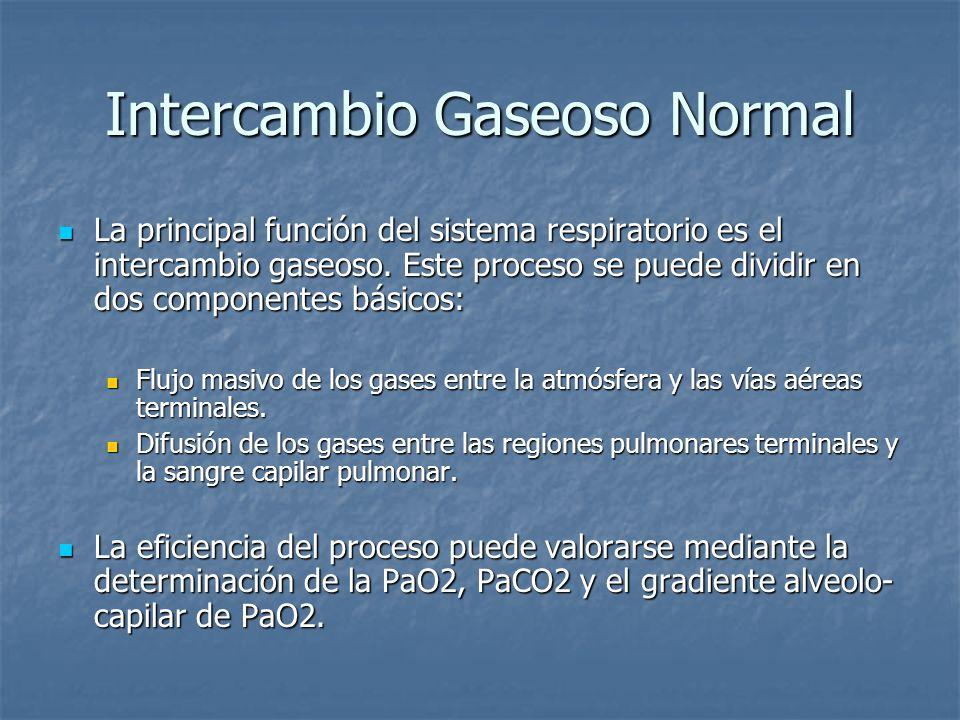 Intercambio Gaseoso Normal