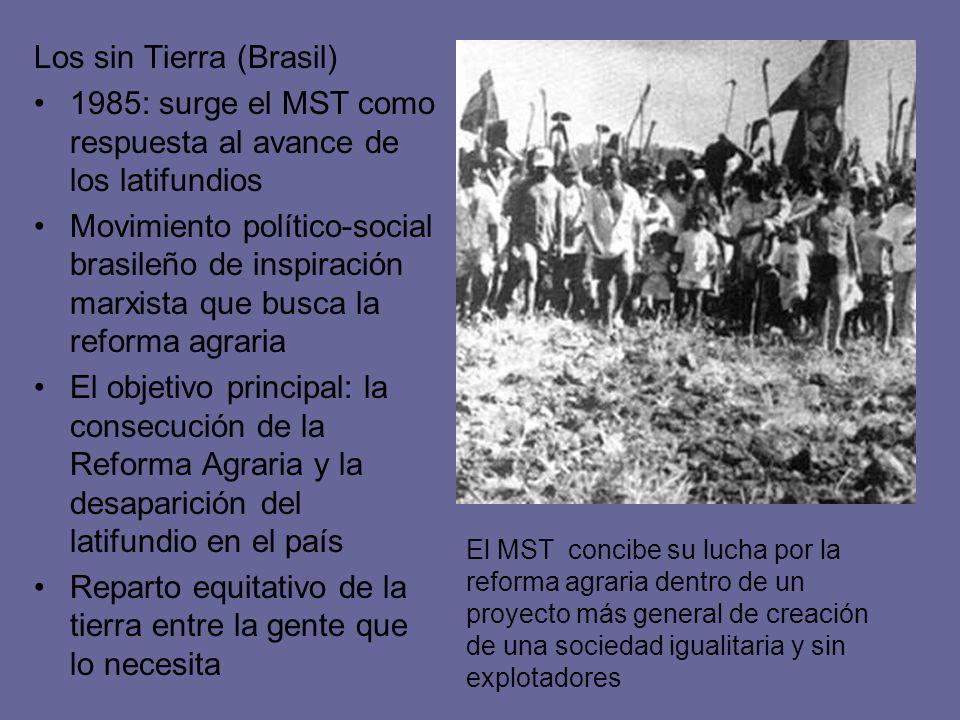 Los sin Tierra (Brasil)