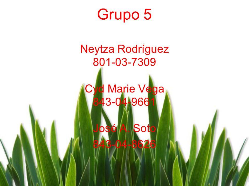 Grupo 5 Neytza Rodríguez 801-03-7309 Cyd Marie Vega 843-04-9661 José A. Soto 843-04-8626