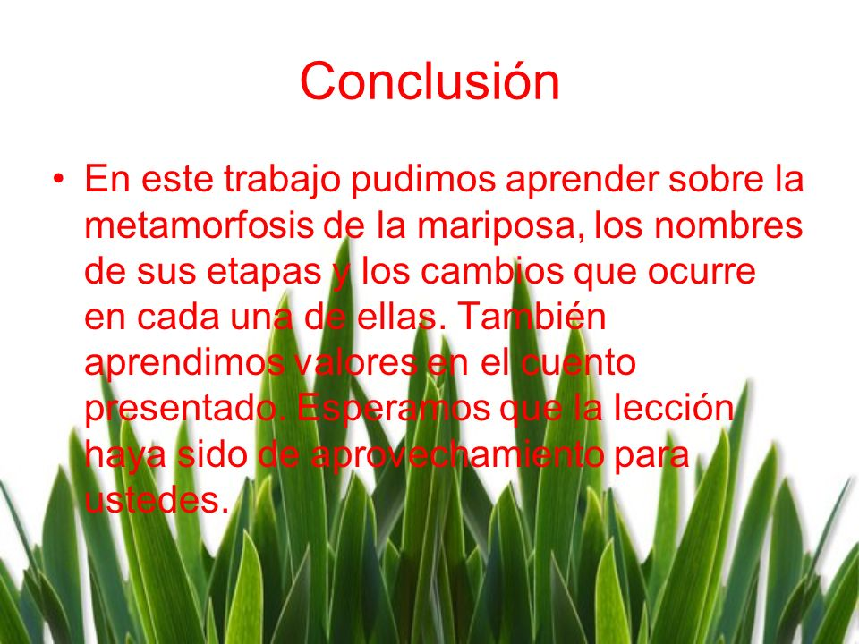 Conclusiόn