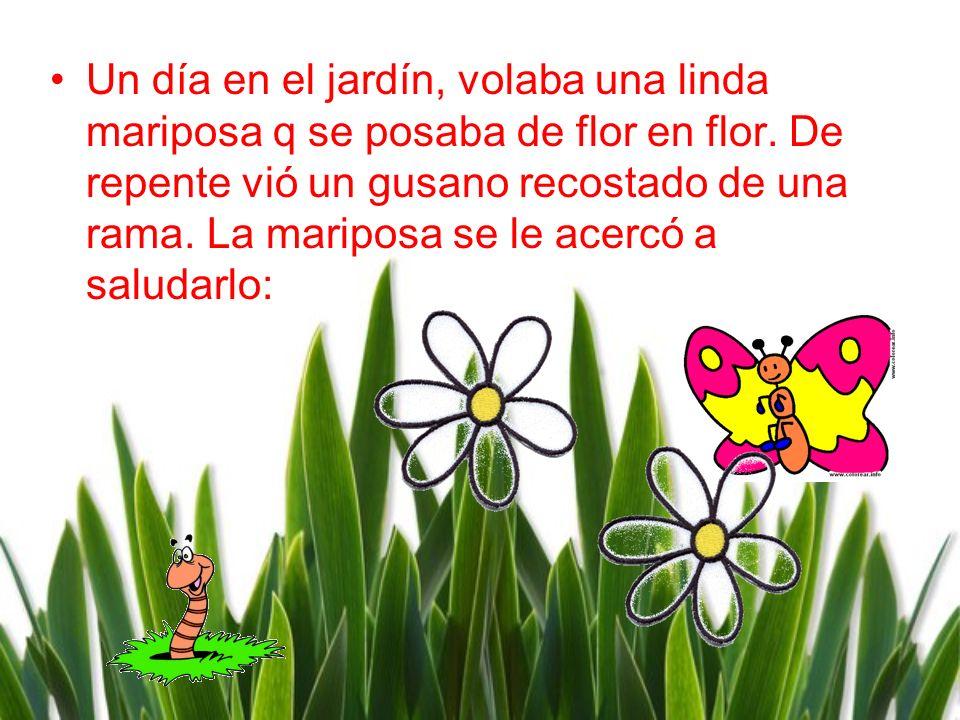 Un día en el jardín, volaba una linda mariposa q se posaba de flor en flor.