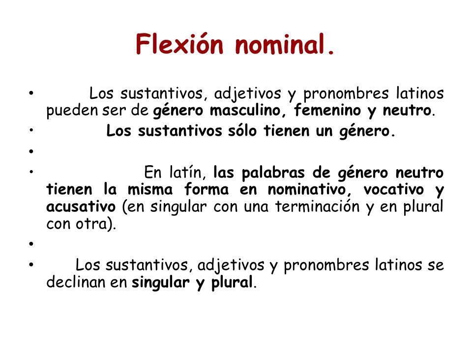 Flexión nominal. Los sustantivos, adjetivos y pronombres latinos pueden ser de género masculino, femenino y neutro.