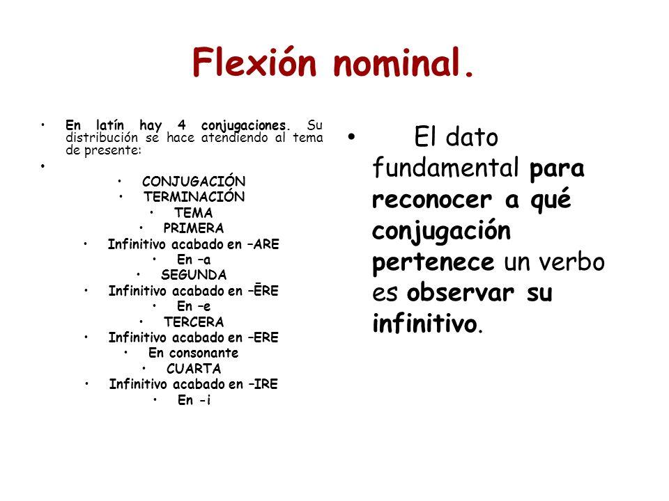 Flexión nominal. En latín hay 4 conjugaciones. Su distribución se hace atendiendo al tema de presente: