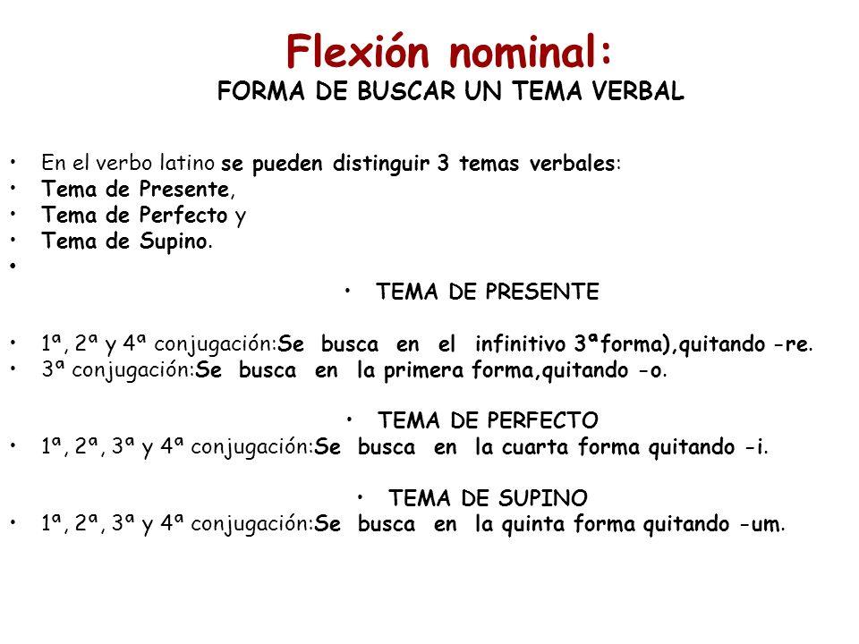 Flexión nominal: FORMA DE BUSCAR UN TEMA VERBAL