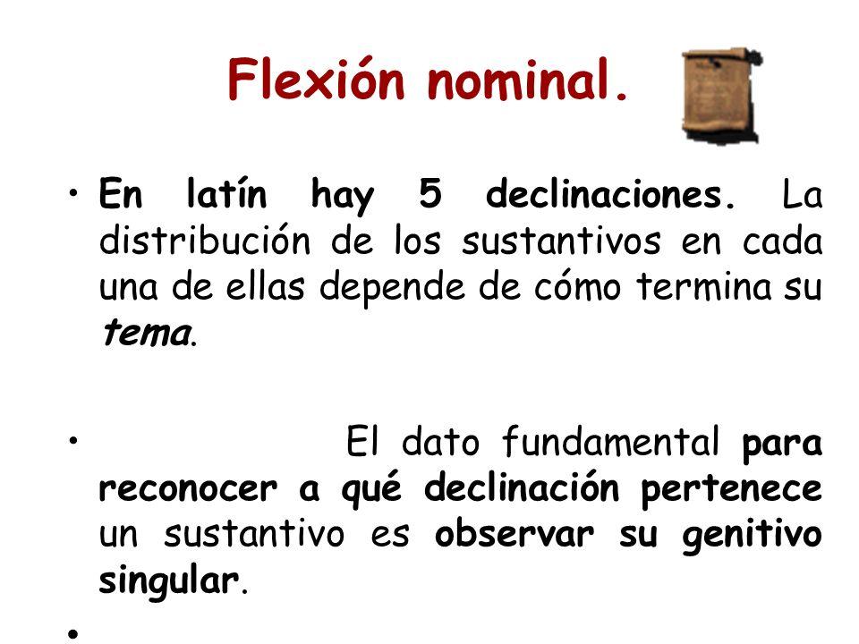 Flexión nominal. En latín hay 5 declinaciones. La distribución de los sustantivos en cada una de ellas depende de cómo termina su tema.