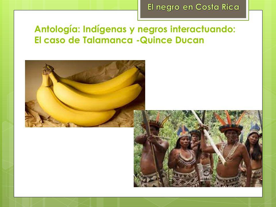 El negro en Costa RicaAntología: Indígenas y negros interactuando: El caso de Talamanca -Quince Ducan.