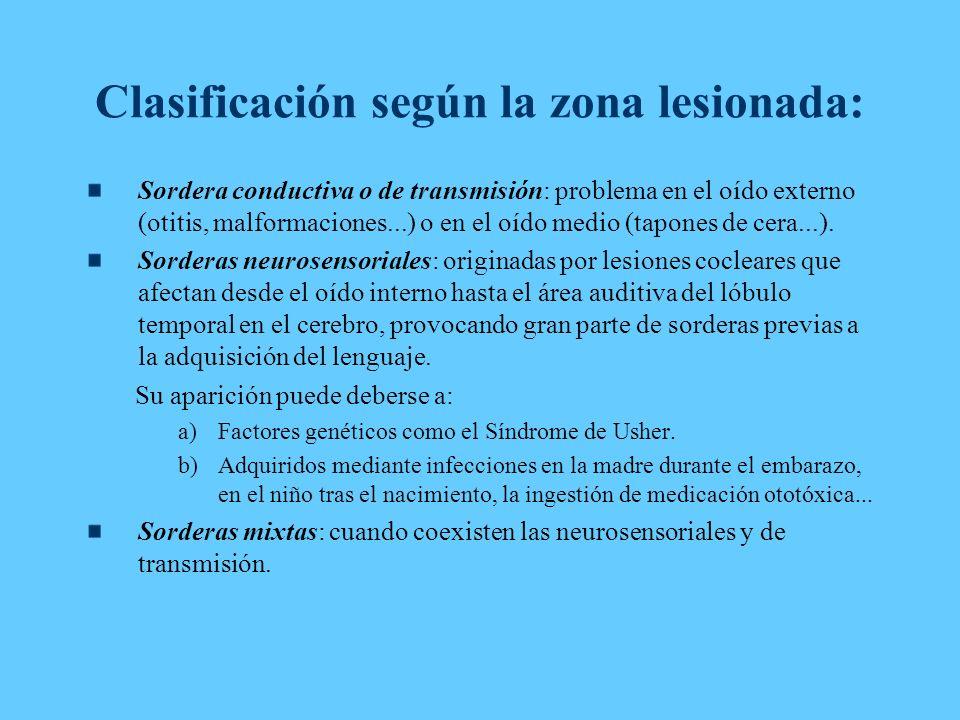 Clasificación según la zona lesionada: