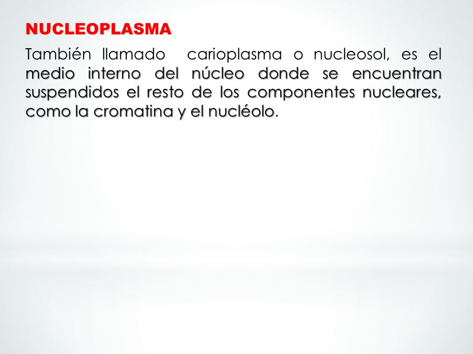 NUCLEOPLASMA También llamado carioplasma o nucleosol, es el medio interno del núcleo donde se encuentran suspendidos el resto de los componentes nucleares, como la cromatina y el nucléolo.