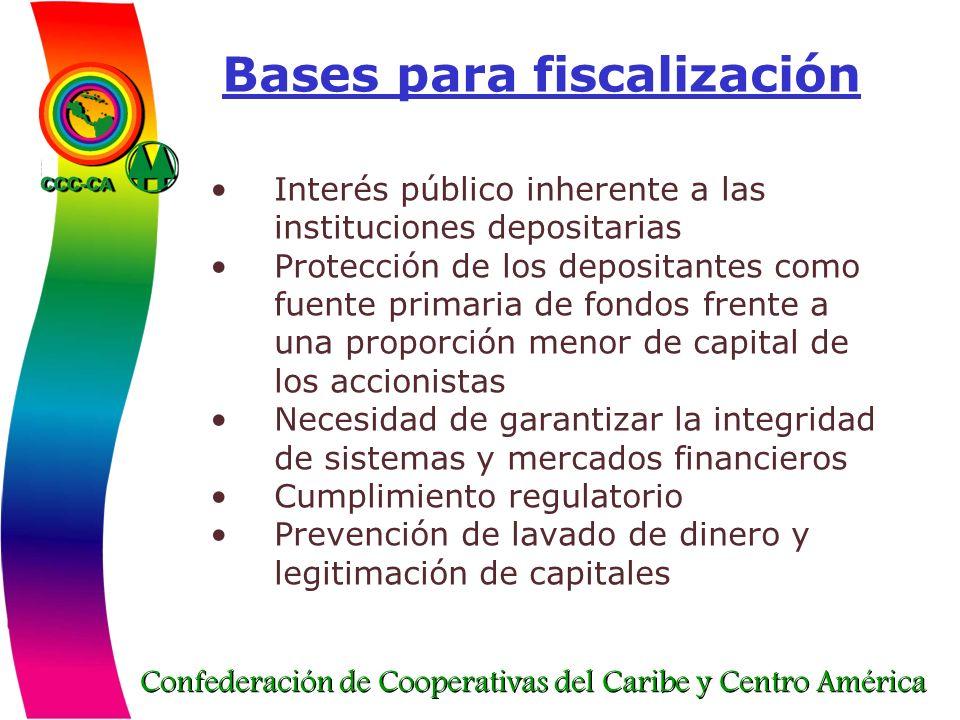 Bases para fiscalización