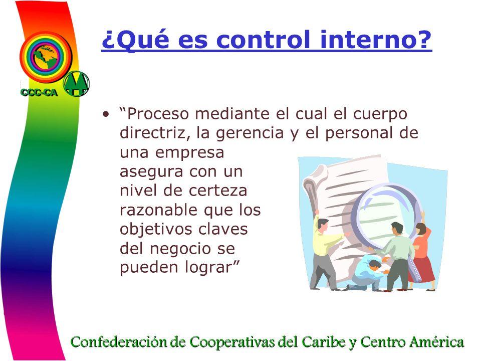 ¿Qué es control interno