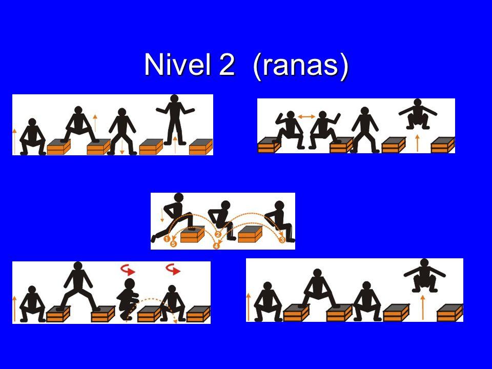 Nivel 2 (ranas)