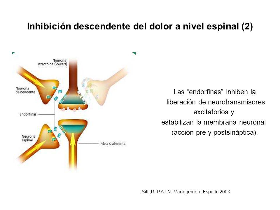 Inhibición descendente del dolor a nivel espinal (2)