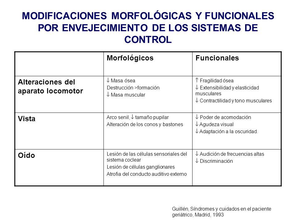 MODIFICACIONES MORFOLÓGICAS Y FUNCIONALES POR ENVEJECIMIENTO DE LOS SISTEMAS DE CONTROL