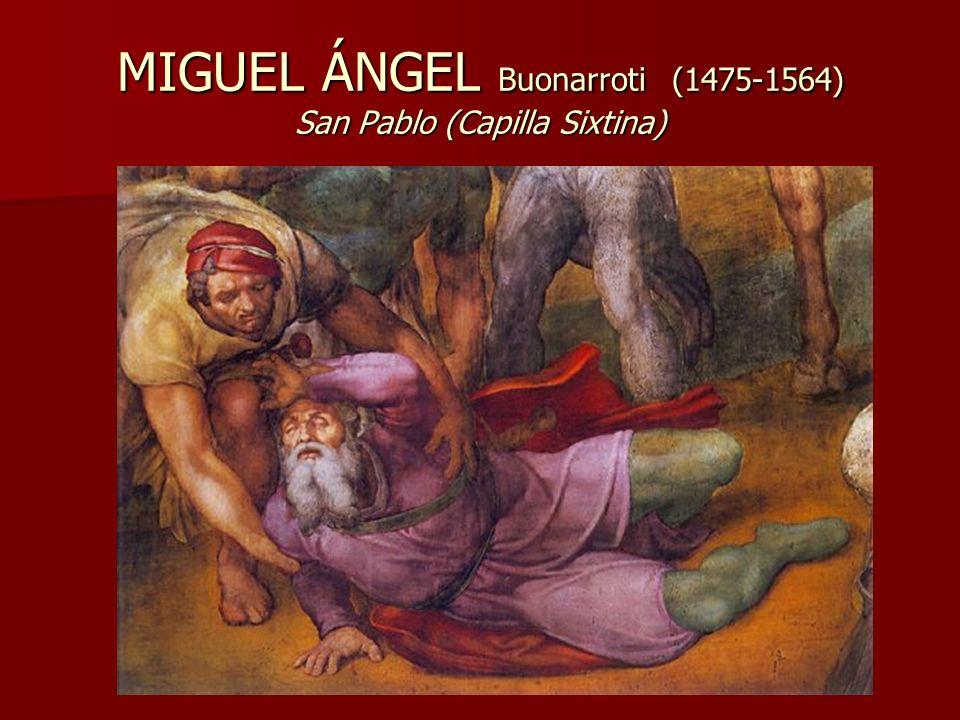 MIGUEL ÁNGEL Buonarroti (1475-1564) San Pablo (Capilla Sixtina)