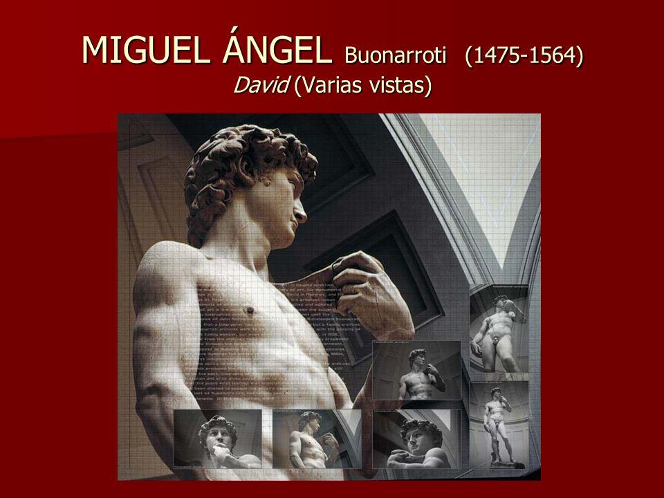 MIGUEL ÁNGEL Buonarroti (1475-1564) David (Varias vistas)