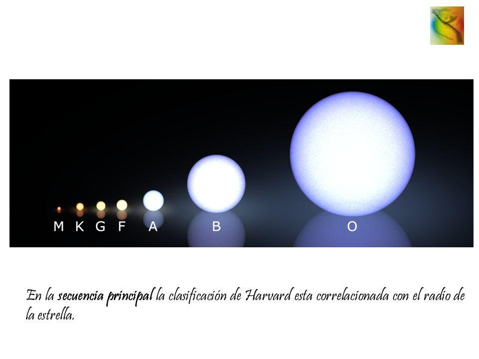En la secuencia principal la clasificación de Harvard esta correlacionada con el radio de la estrella.