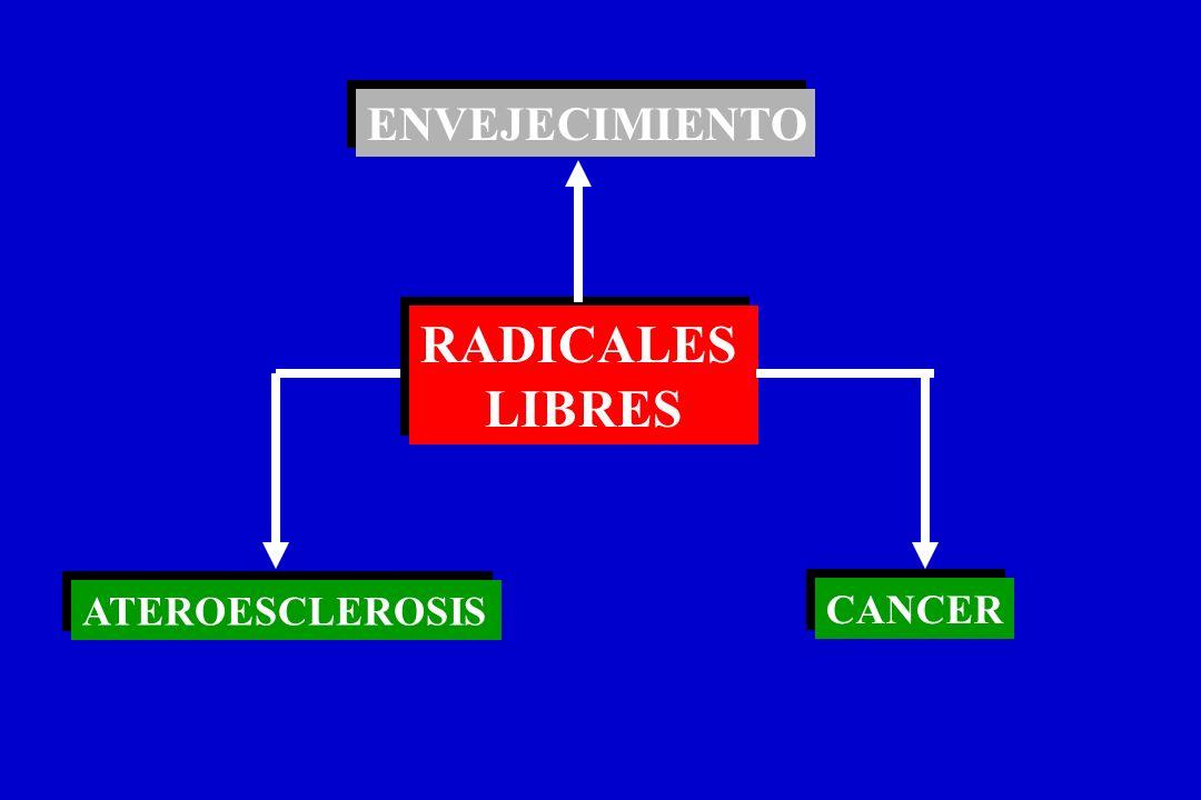 ENVEJECIMIENTO RADICALES LIBRES ATEROESCLEROSIS CANCER
