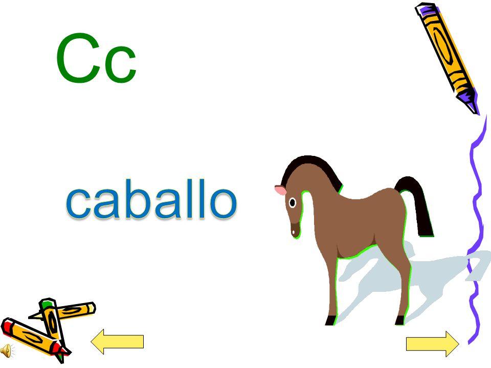 Cc caballo