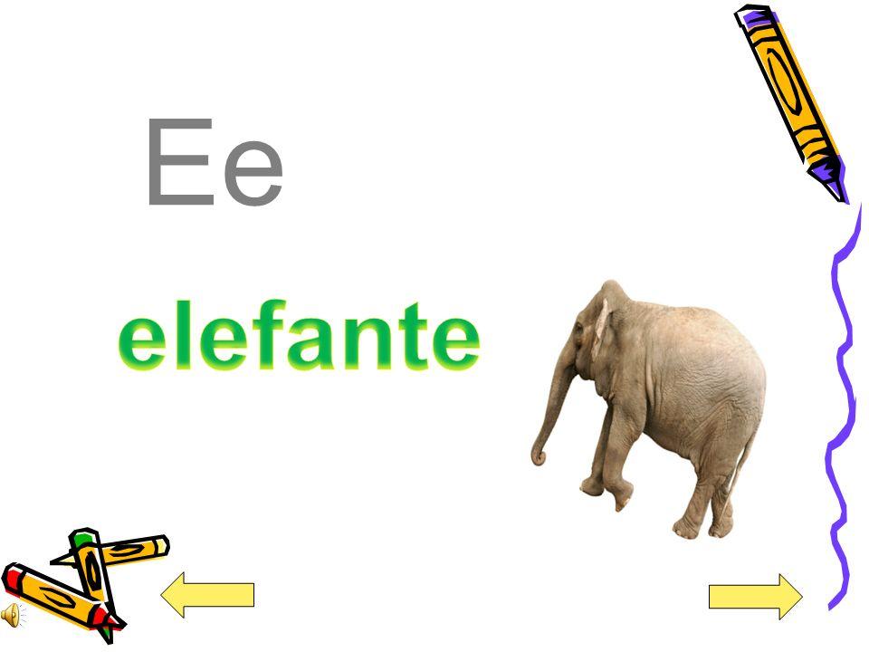 Ee elefante