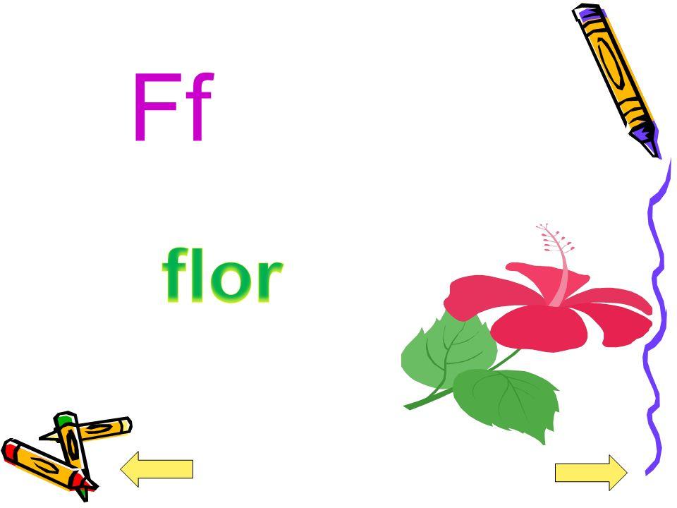 Ff flor
