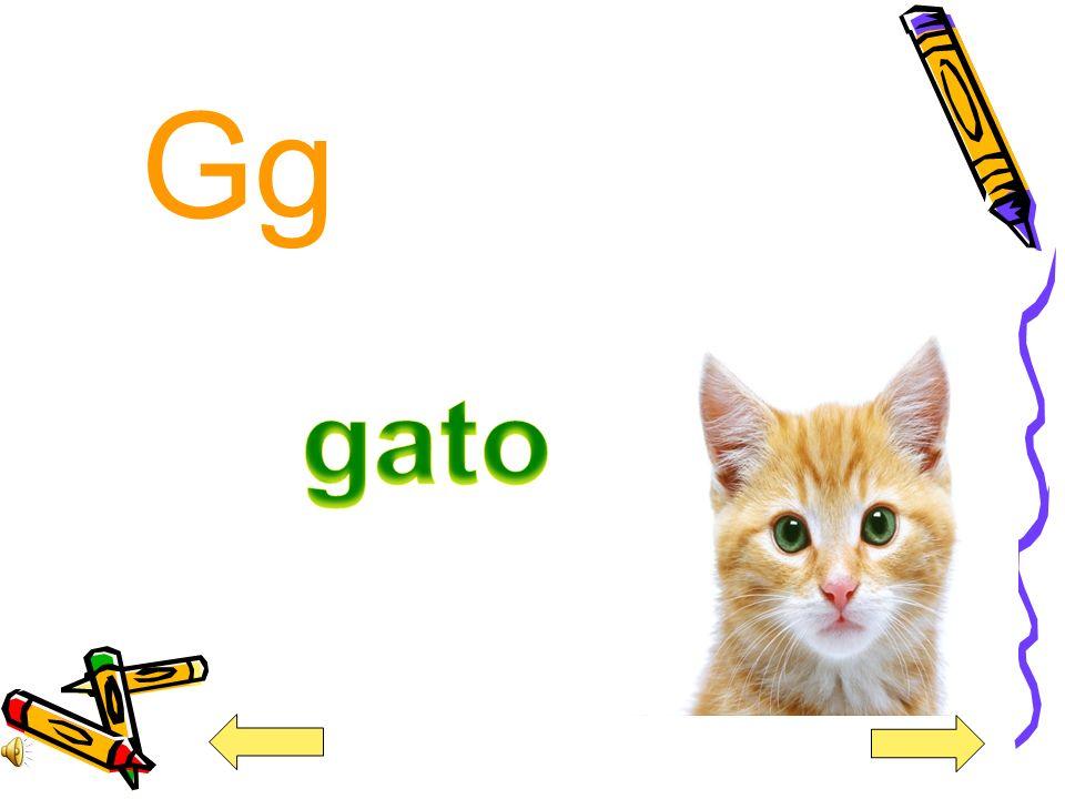 Gg gato