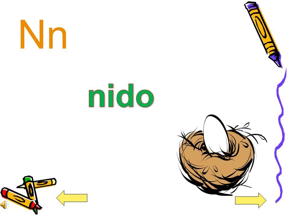 Nn nido