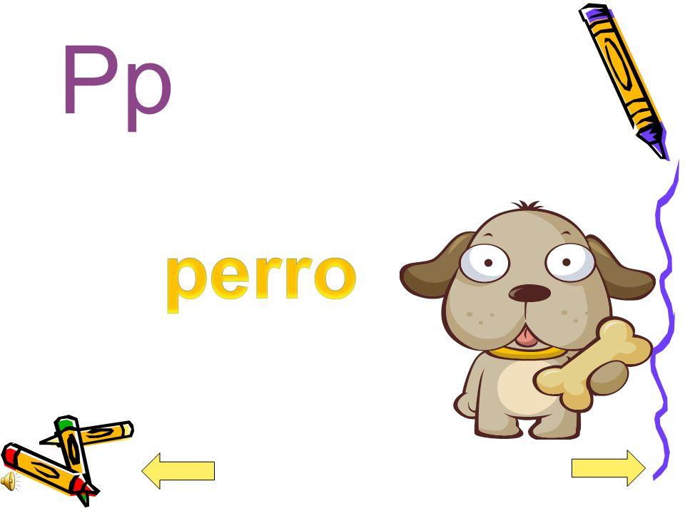 Pp perro