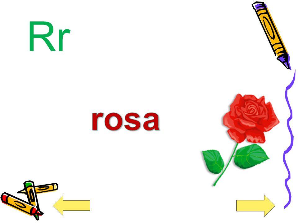 Rr rosa