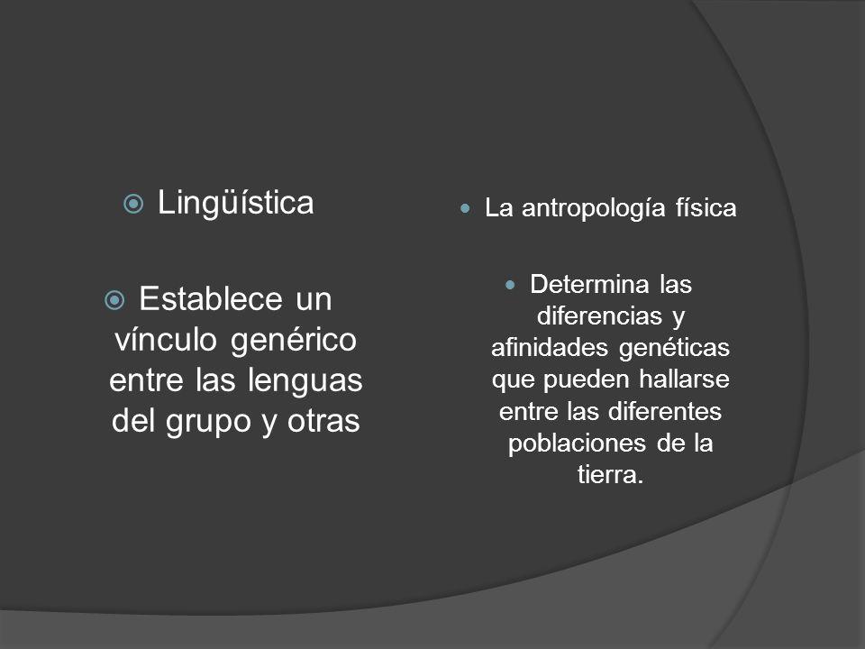 Establece un vínculo genérico entre las lenguas del grupo y otras